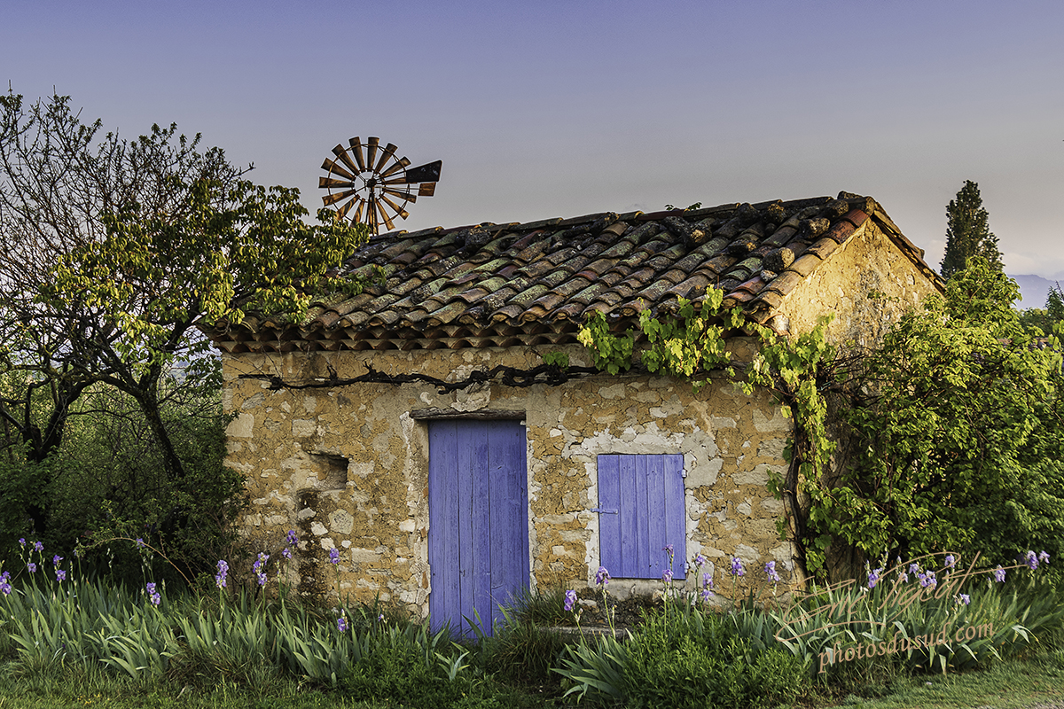 Read more about the article Le cabanon des iris